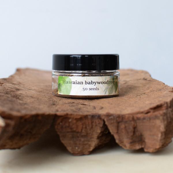 Hawaiian baby woodrose lsa seeds Argyreia-nervosa - herbal spirit