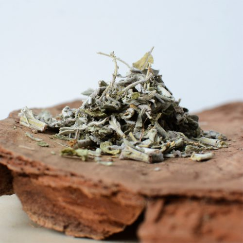 salie Salvia officinalis thee - herbal spirit