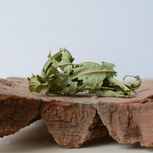 vervene Verbena officinalis bladeren - herbal spirit