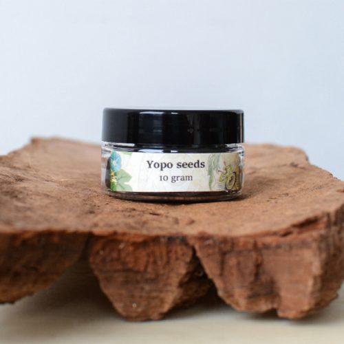 yopo zaden Anadenanthera peregrina - herbal spirit